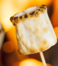 fire_roasted_marshmallows_loverth